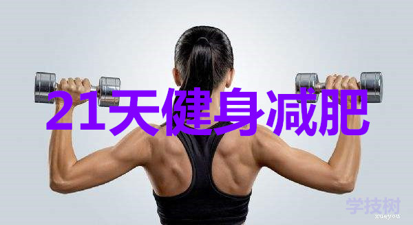 21天健身减肥视频教程