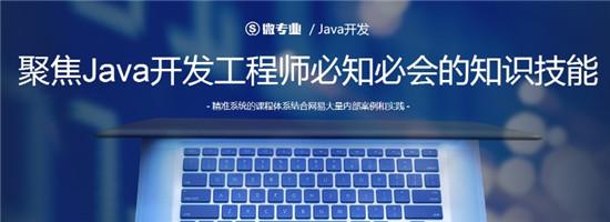 微专业 Java开发:聚焦Java开发工程师必知必会的知识技能