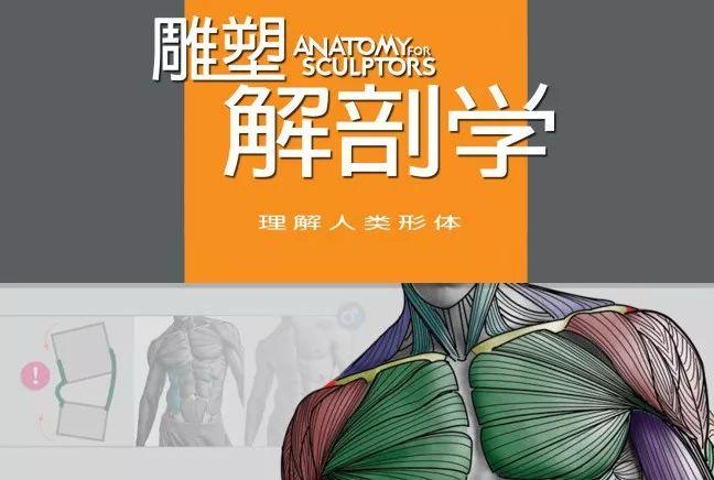 学习资源 | 人类形体雕塑解剖学汉译彩印全集