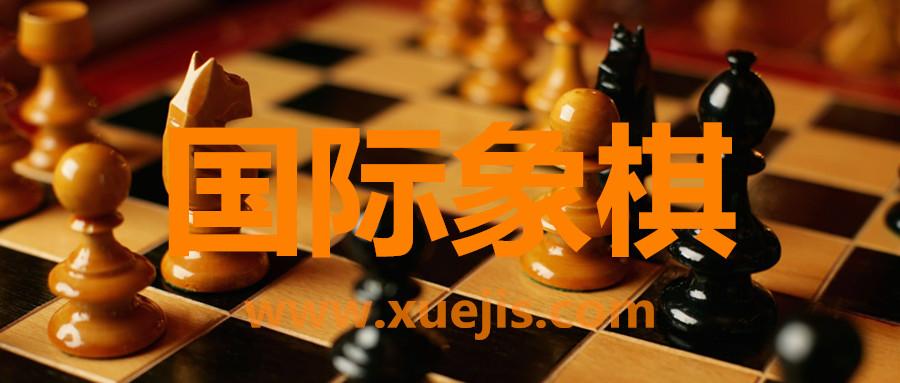 国际象棋视频教程  百度网盘