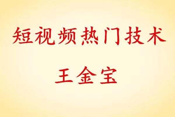 王金宝短视频热门技术百度网盘下载 百度网盘