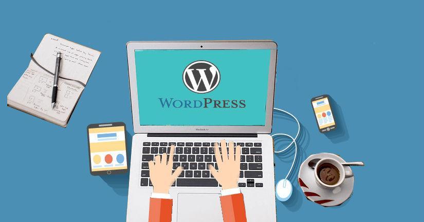 外贸建站系列课程:Enfold主题详解与实例视频教程WordPress建站