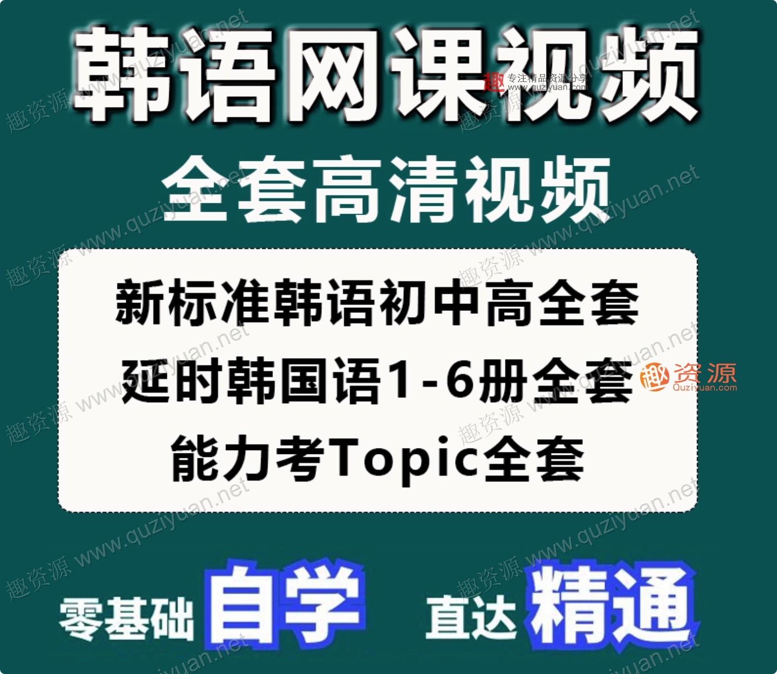 韩语网课零基础自学入门延世韩国语视频教程TOPIK考级课程资料新(100GB)