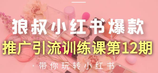 小红书爆款推广引流训练课第12期  百度网盘