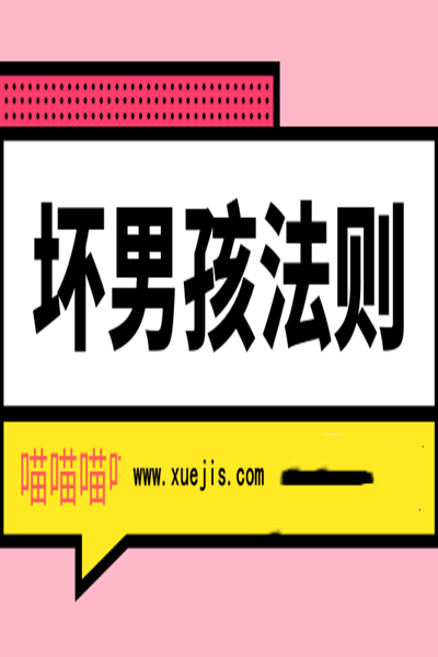 《坏男孩法则》PDF扫描版