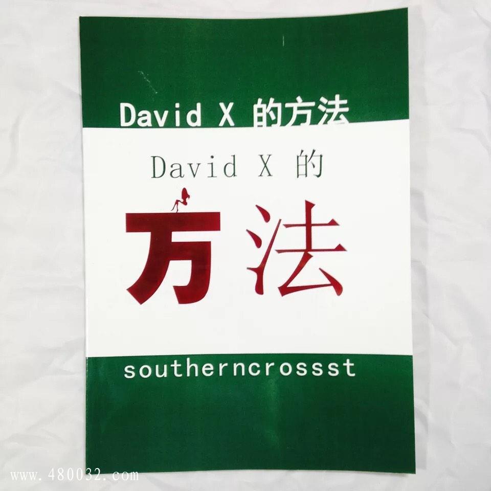 《David+X方法》PDF扫描版_百度云网盘资源教程