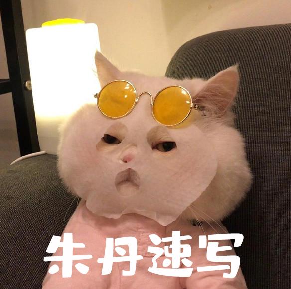 朱丹速写基础课_百度云网盘视频教程